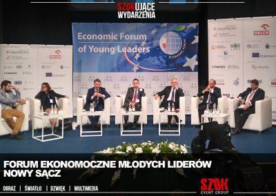 Forum Ekonoczmine Młodych Liderów NS